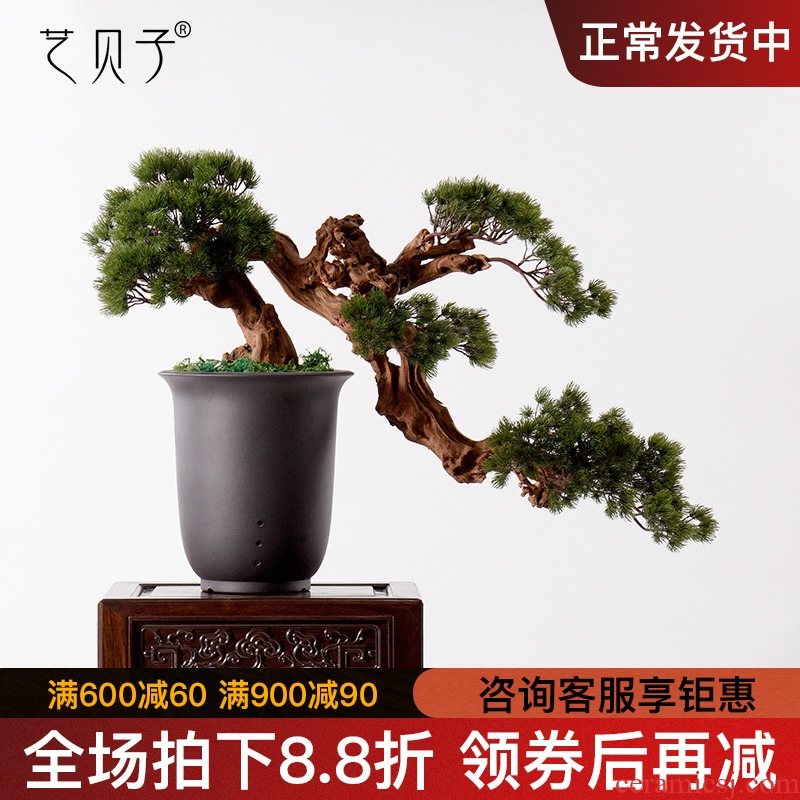 New Chinese style water simulation guest - the greeting pine wood rockery miniascape of I sitting room dry landscape ceramic study zen furnishing articles