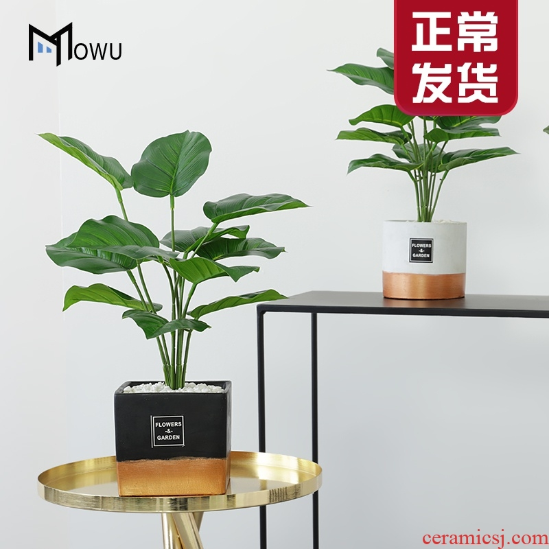 The house ins creative interior gold - plated ceramic simulation The plants potted Nordic style green plant adornment furnishing articles in The living room