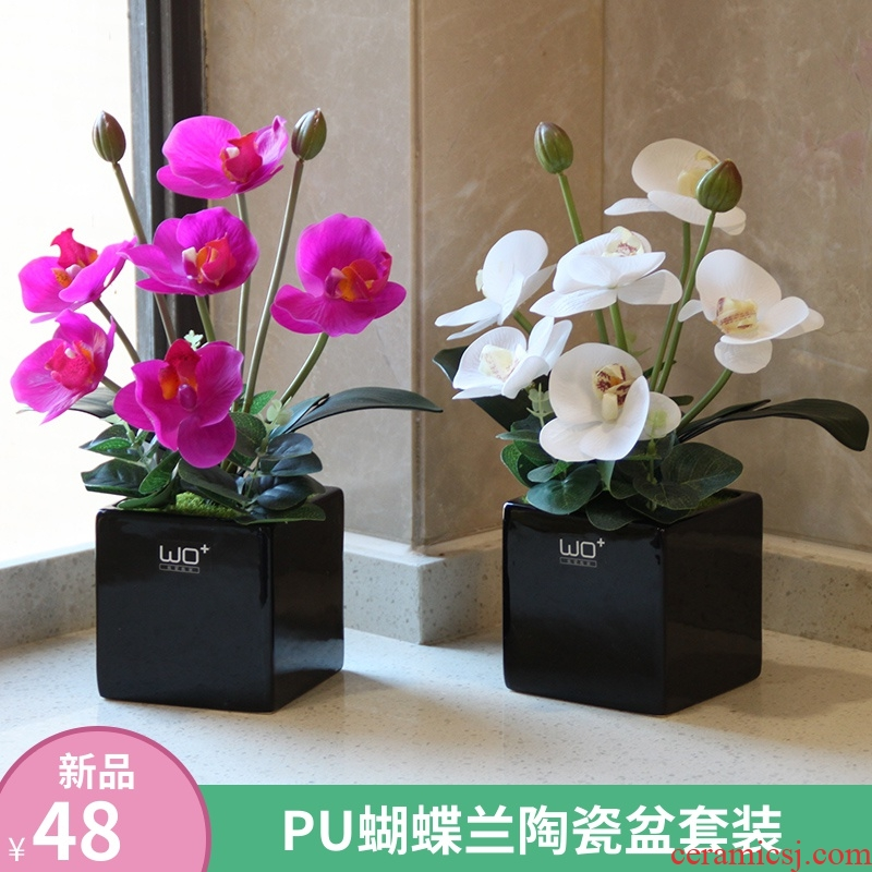 Send the PU + high simulation butterfly orchid floral suit I and contracted desktop conference decoration is seems ceramic flower pot