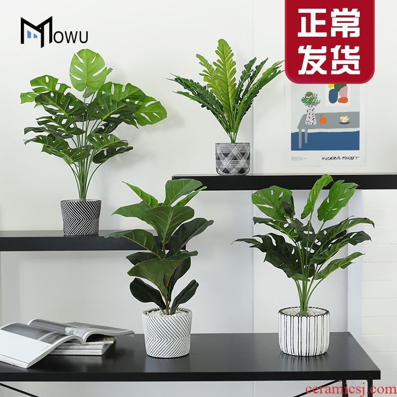 The house abreu teng creative clay simulation The plants potted green plant bonsai sitting room ins indoor decorative furnishing articles