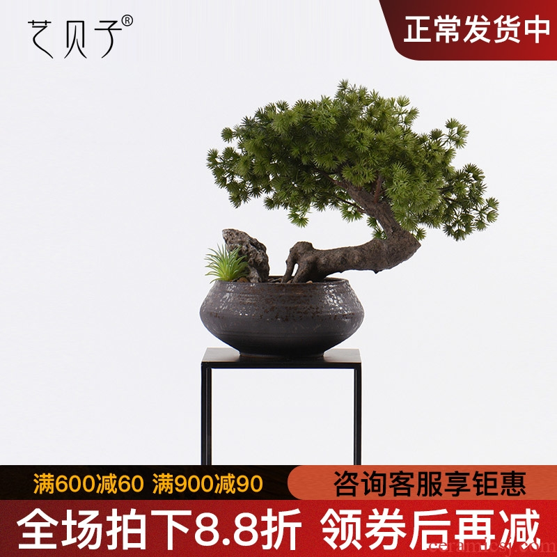 New Chinese style guest - the greeting pine bonsai place dry landscape example room micro landscape, green plant ceramic pot home decoration