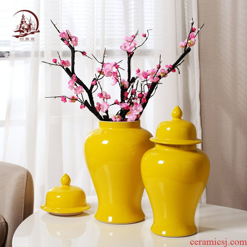 Modern Chinese style household general pot vase in the sitting room porch decoration flower arranging ceramic pot large TV ark, furnishing articles