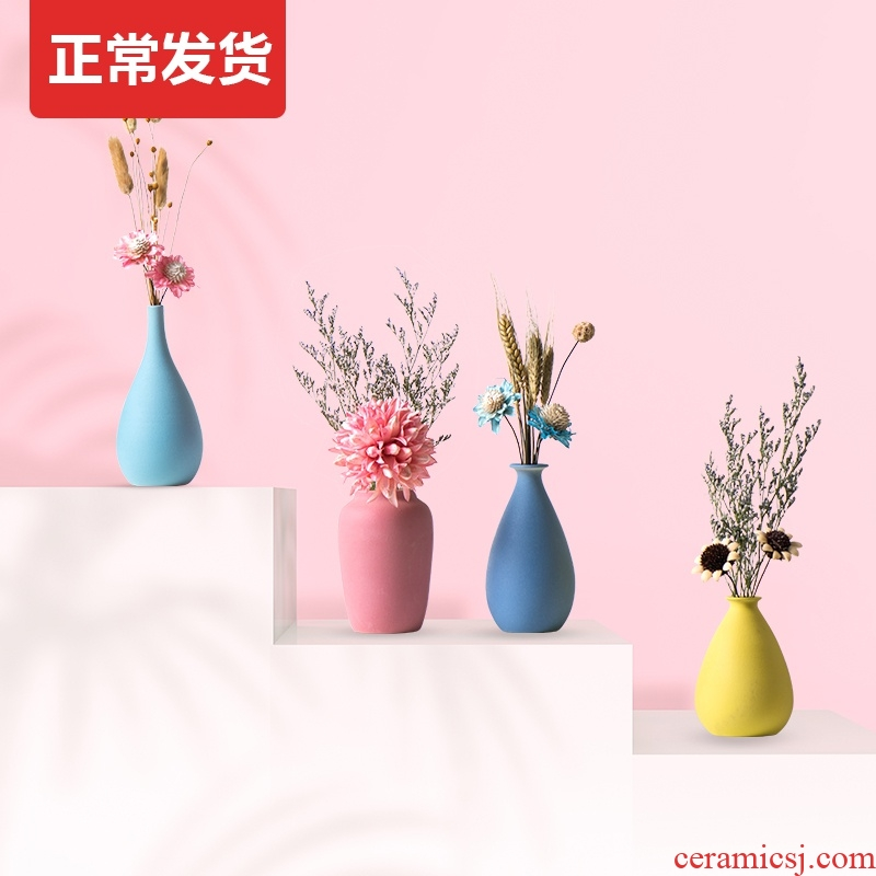 TV ark, dried flower adornment suit with floret bottle furnishing articles table sitting room flower arranging ceramic Nordic household act the role ofing is tasted