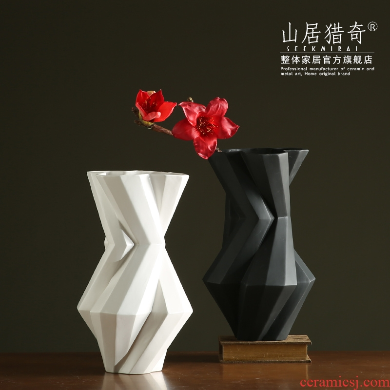 Modern living room between example art flower arranging furnishing articles Nordic geometric flower implement, black and white pigment ceramic vase