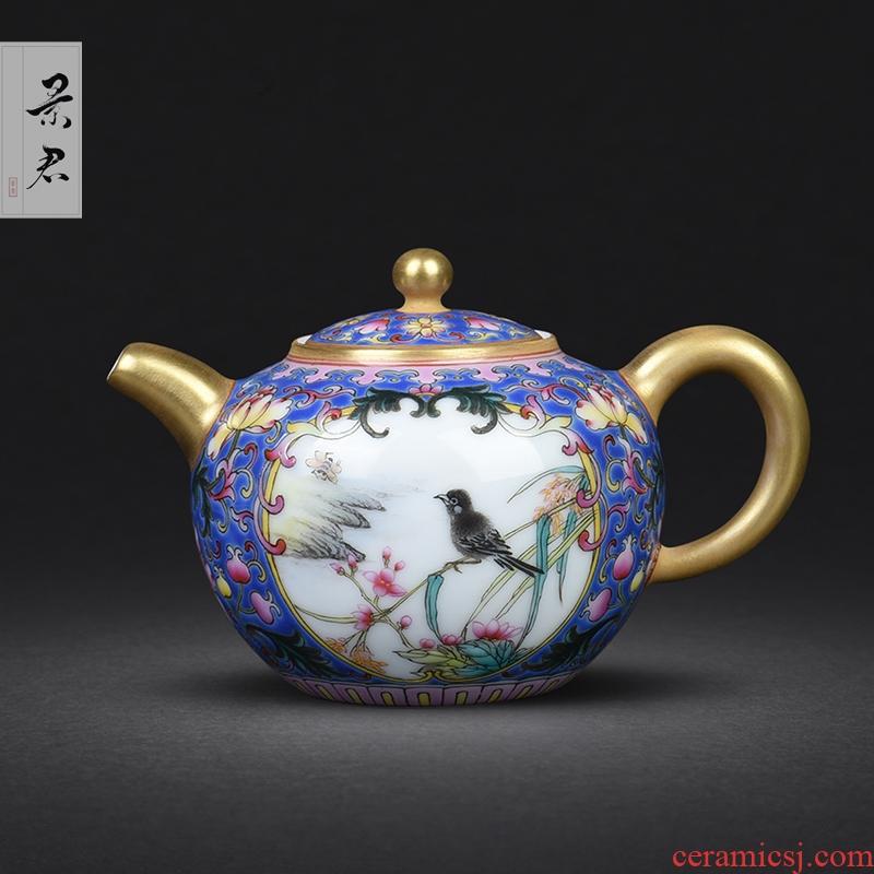 JingJun jingdezhen hand - drawn colored enamel POTS of flowers and birds medallion ceramic kung fu tea set single pot of tea tea