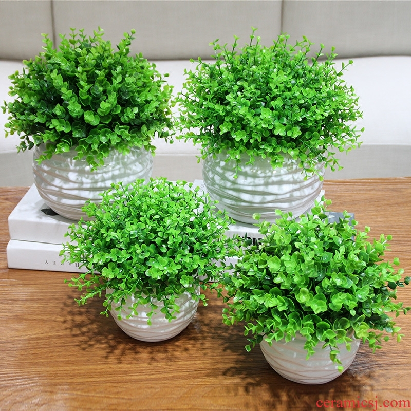 The Send + simulation eucalyptus with ceramic flower pot and fresh green plant flower the suit I and contracted household act the role ofing is tasted