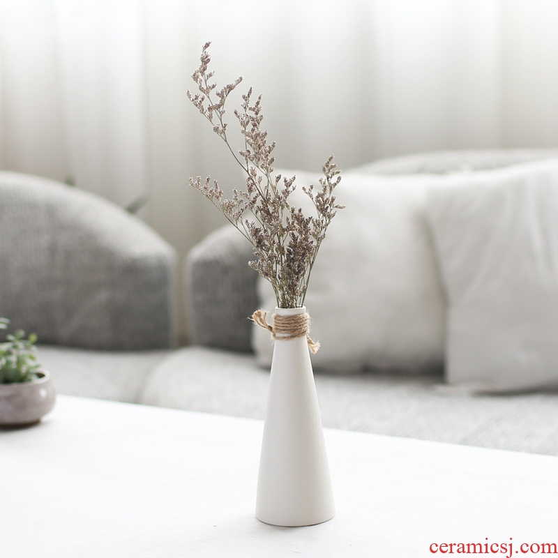 Nan sheng I and contracted creative ceramic vase simulation flowers, dried flowers, household act the role ofing is tasted furnishing articles mesa of flower arrangement