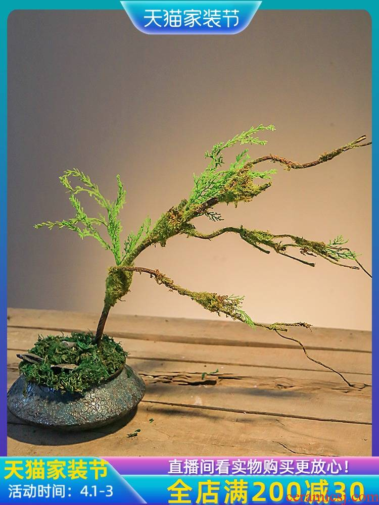 Jingdezhen household interior decoration plant bonsai creative potted small place retro nostalgia sitting room desktop simulation