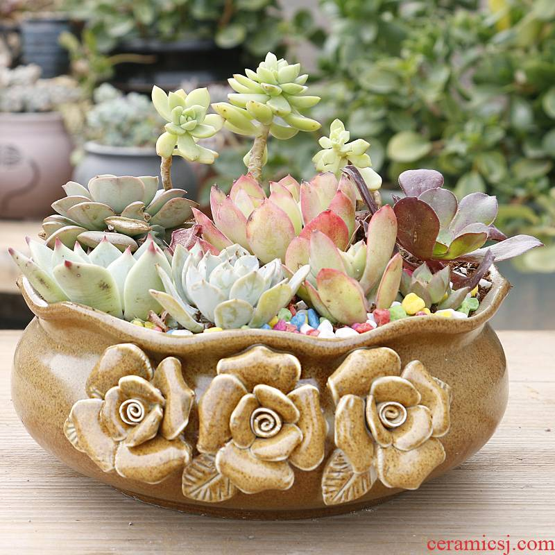 Creative fleshy flower POTS, large diameter platter is ceramic contracted character large extra large clearance meat potted the plants