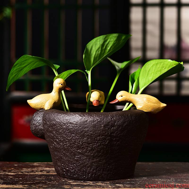 Creative hydroponic nonporous refers to flower pot ceramic balcony contracted water lily bowl lotus copper grass special money plant POTS