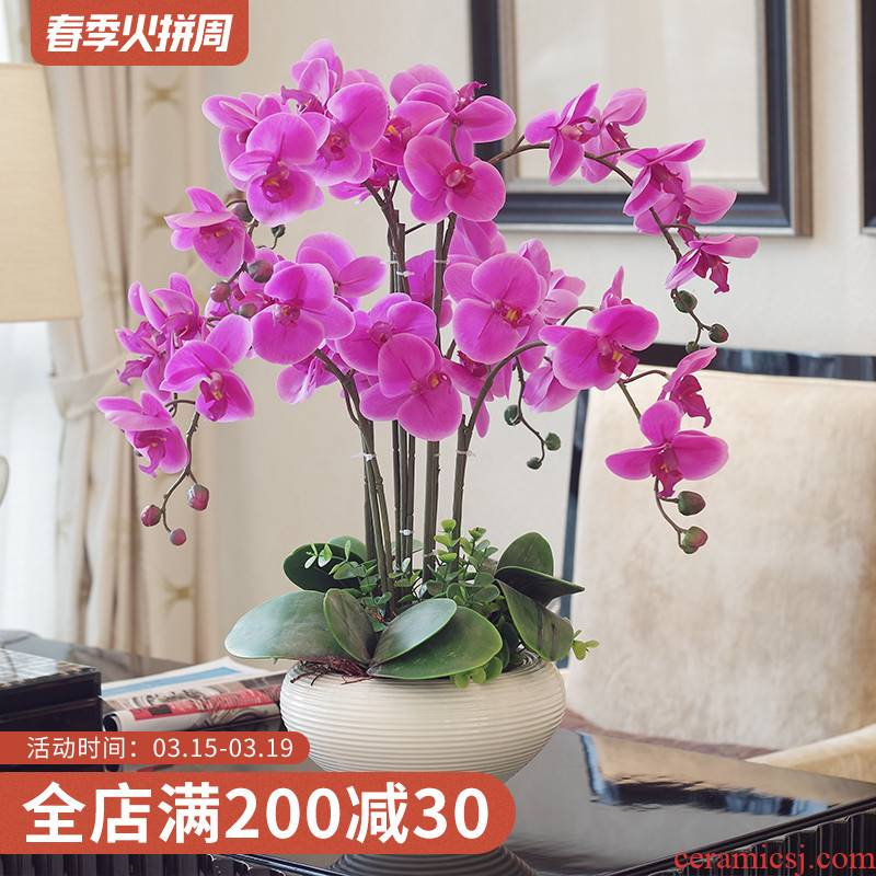 Drunken Yin twelve simulation suit household act the role ofing is tasted ceramic vases, flower arranging flower the finished furnishing articles decorative flowers