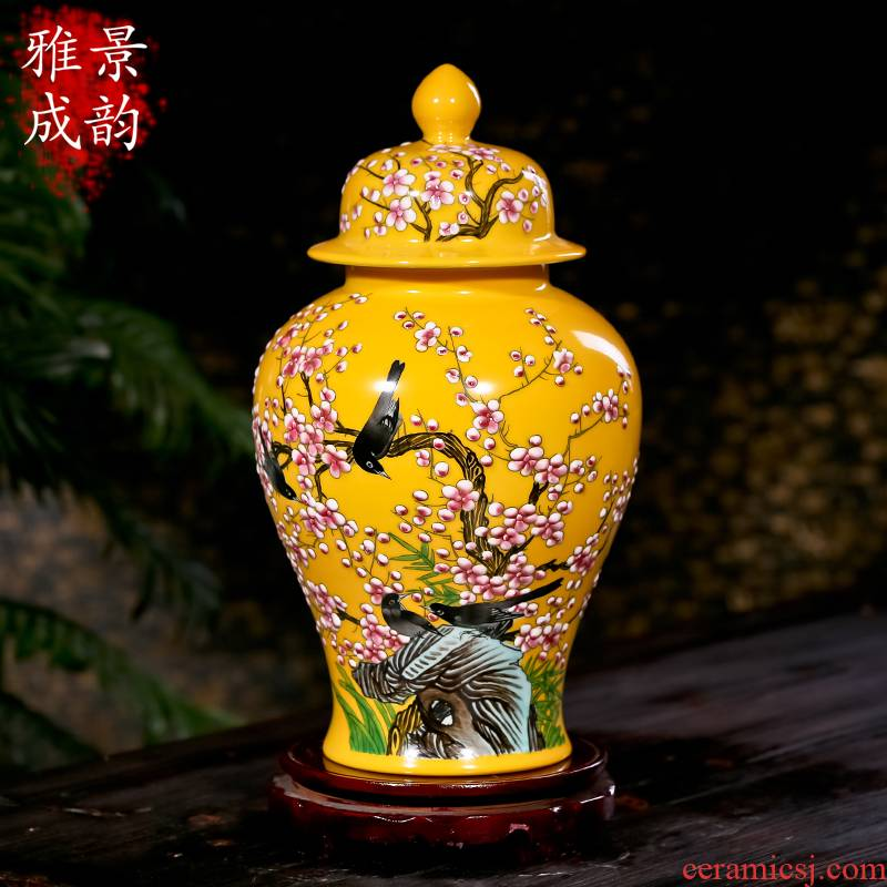 Jingdezhen chinaware bottle of flower vase and furnishing articles sitting room adornment the general pot of I and contracted jewelry