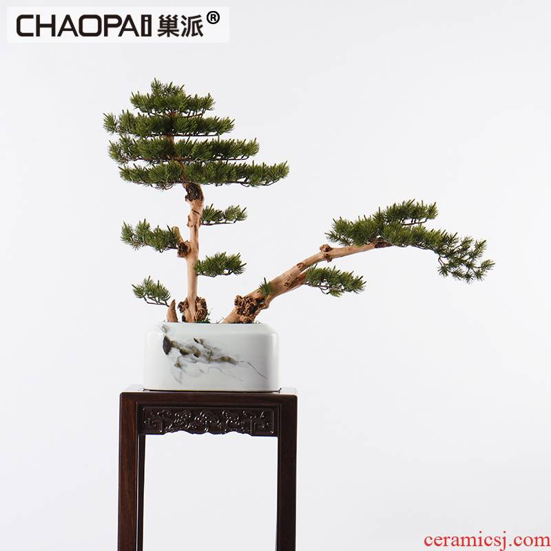 Modern Chinese style white ceramic vase simulation soft adornment guest - the greeting pine bonsai furnishing articles the hotel floor lobby