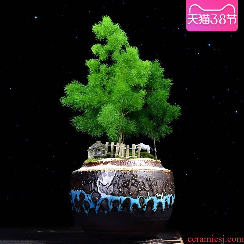 Variable temmoku creative flowerpot ceramic green plant large fortune bonsai tree asparagus fleshy flowerpot bonsai pot restoring ancient ways