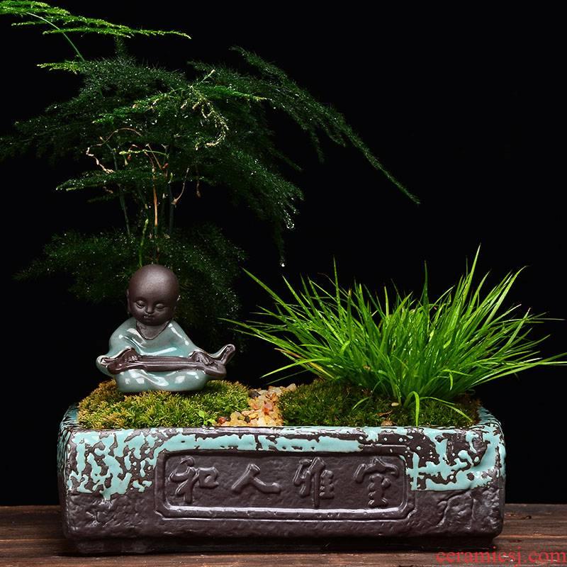 YOU square brick han moss calamus asparagus moss flowerpot indoor creative ceramic purple, fleshy miniascape of zen