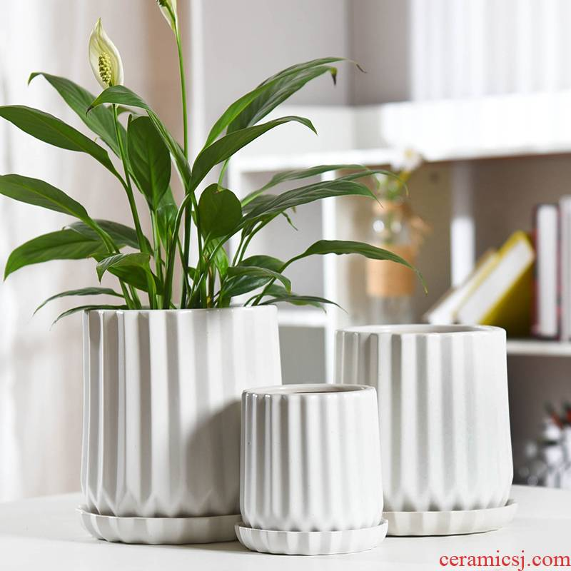 Flowerpot ceramic contracted white Nordic style of creative move pallet money plant green plant the plants mostly meat Flowerpot