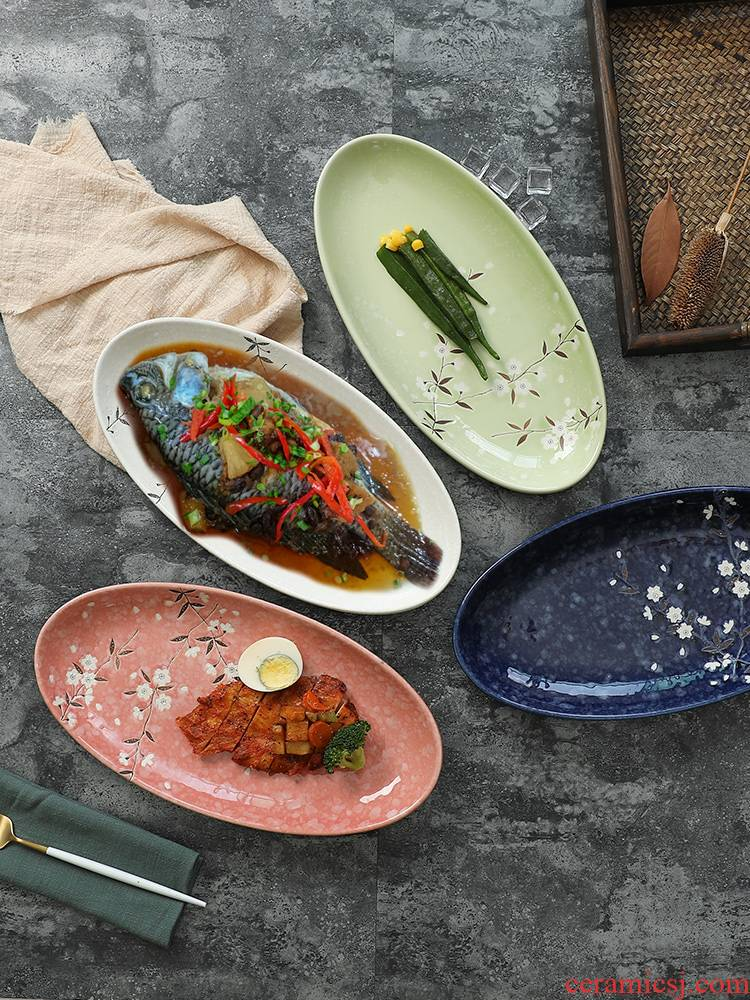 Japanese fish dish home steamed fish dish and ceramic tableware ltd. creative rectangle large new restaurant