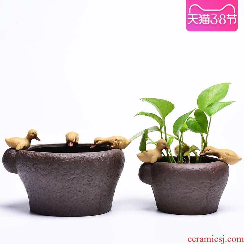 Creative purple sand flowerpot furnishing articles without hole, desktop potted the plants animals duck retro imitation stone mortar hydroponic flower pot