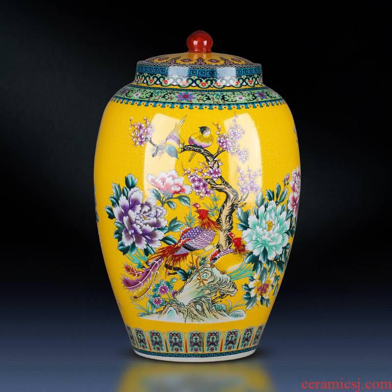 Jingdezhen ceramics landing place big barrel 50 pounds with a lid storage tank moistureproof insect - resistant home decor