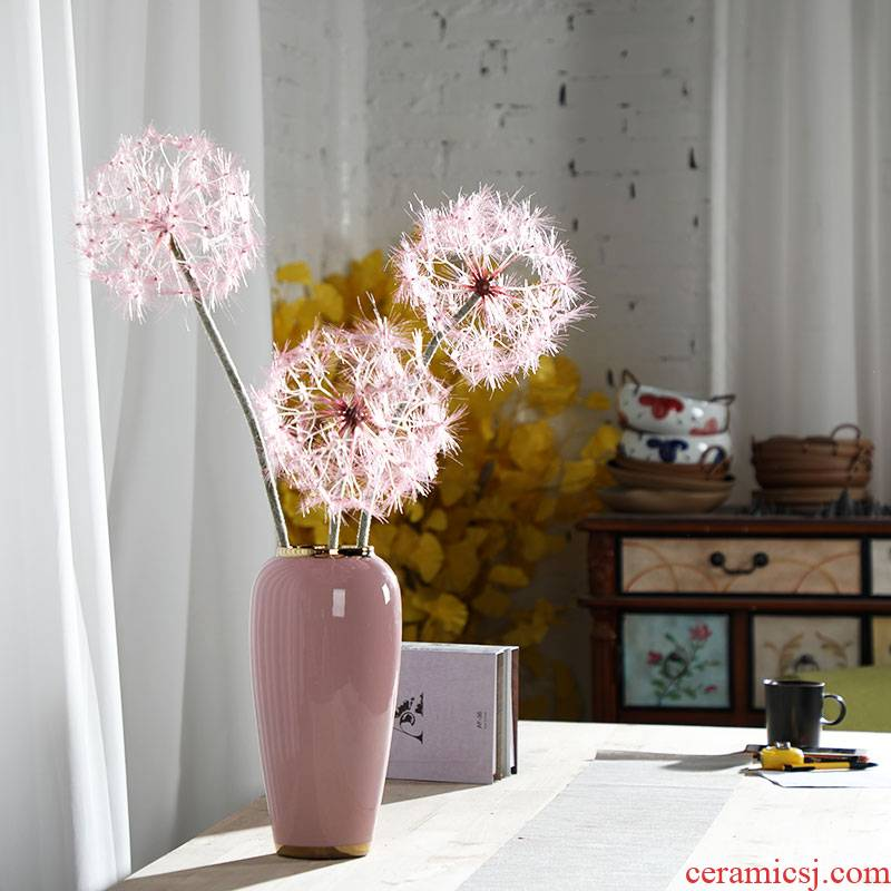 Nordic ins furnishing articles pink ceramic vase dandelion flower arrangement sitting room decoration is contracted and I household adornment