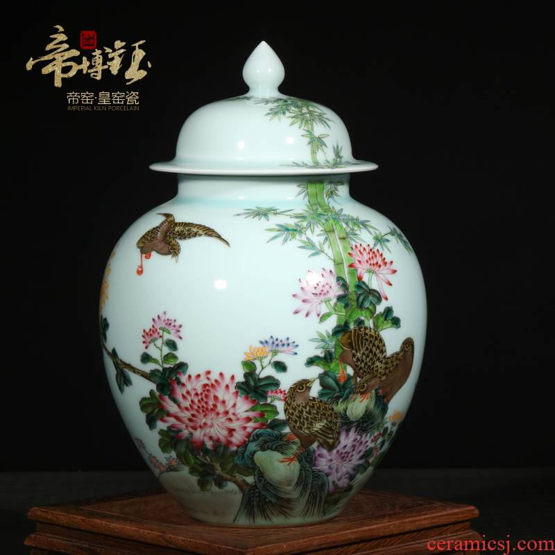 Jingdezhen ceramic vases, antique hand - made pastel place to live and work in peace and contentment tea pot general large
