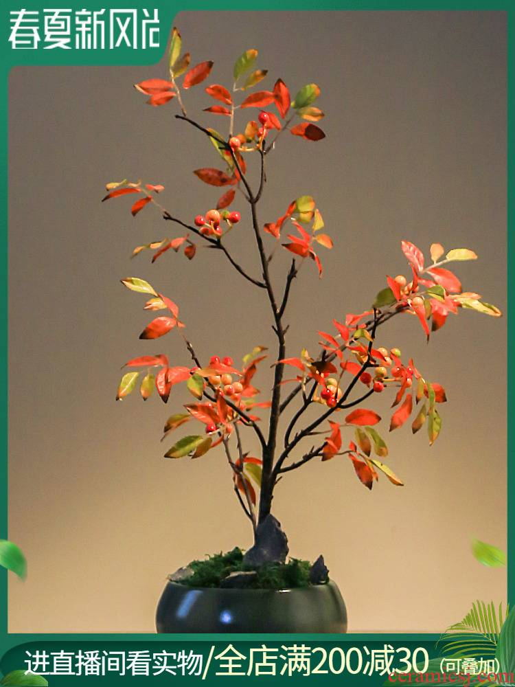 Jingdezhen ceramic simulation plant decoration creative furnishing articles sitting room desktop potted household indoor green plant bonsai