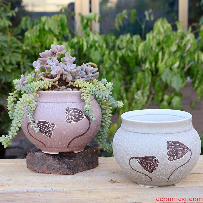 Meaty plant contracted character coarse pottery flowerpot creative ceramics violet arenaceous breathable mage large old high running the potted flower