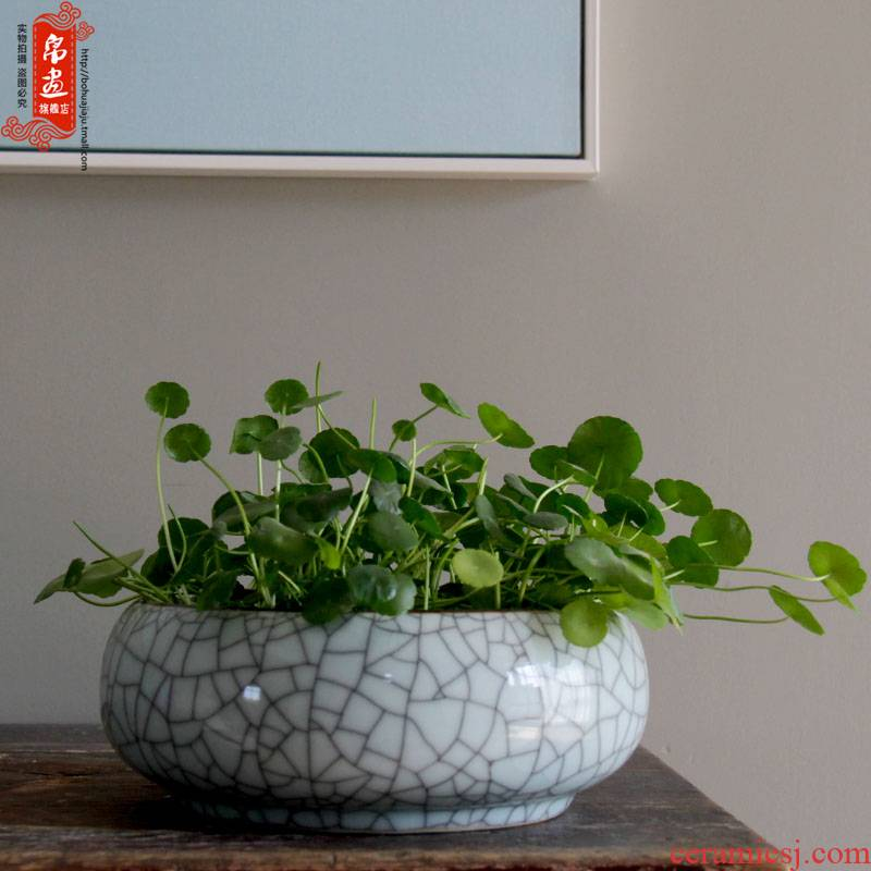 Other hydroponics vase water raise of jingdezhen ceramics flowerpots furnishing articles desktop decoration aquarium writing brush washer expressions using wide open