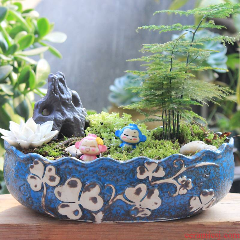 Large - diameter fleshy meat meat, green plant contracted creative flowerpot ceramics is increasing in wide expressions using pot basin of Large special offer a clearance