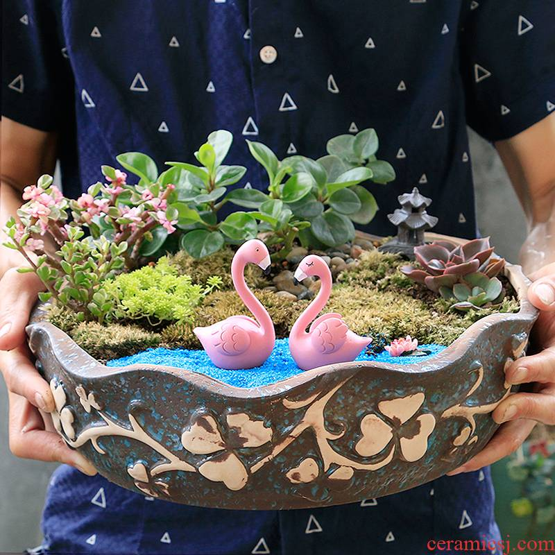 The Fleshy flower POTS, large diameter special offer a clearance package mail oversized contracted creative flowerpot ceramic large platter move
