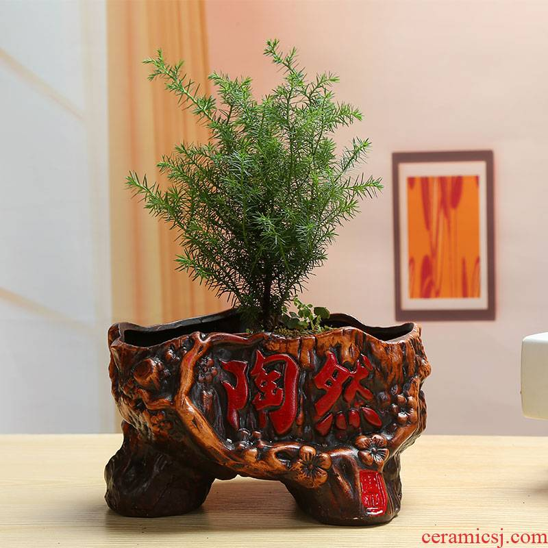 European large asparagus rich tree banyan potted bracketplant ceramic flower pot individuality creative retro green plant more meat basin