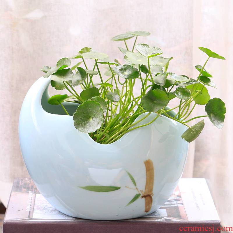 Large hydroponic fleshy flowerpot creative copper bowl lotus lotus lotus grass without special offer a clearance hole money ceramics