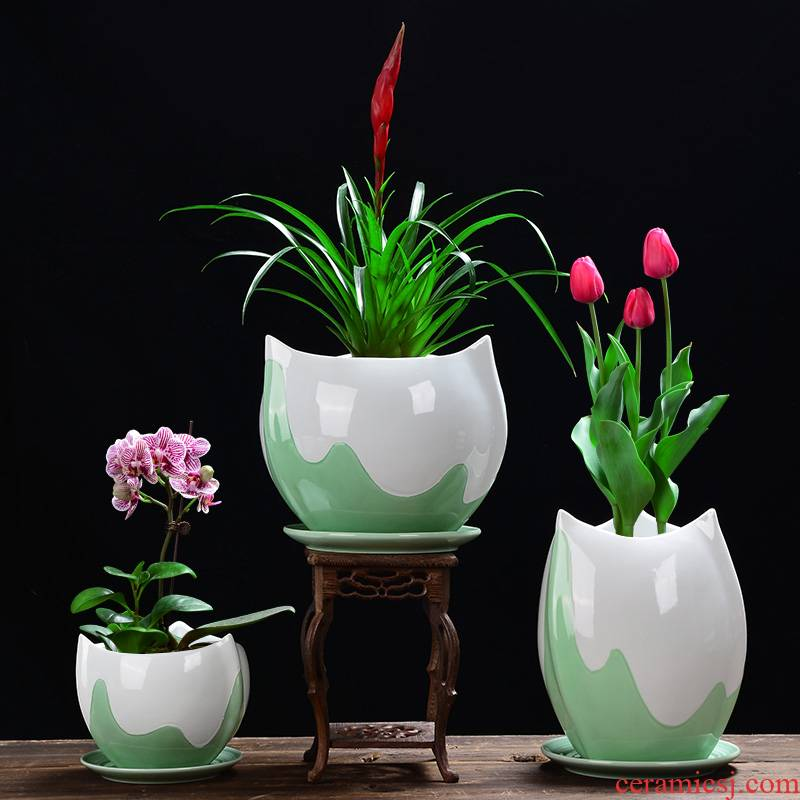 YOU large money plant celadon ceramic flower POTS with tray orchid pot pot meat meat, green potted the plants, fleshy