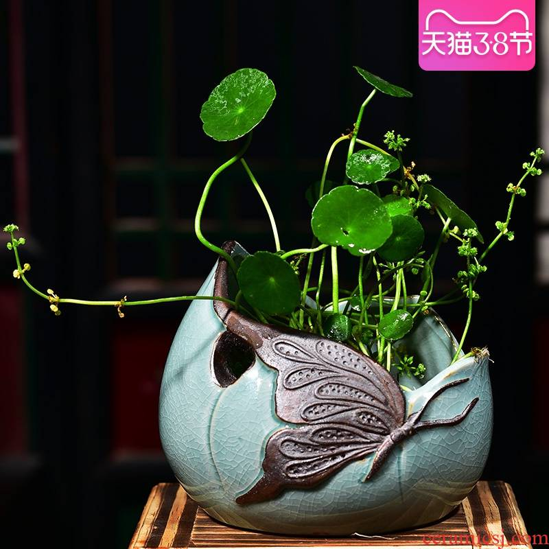 Refers to flower pot ceramic creative nonporous home hydroponic basin is copper money plant water raise grass withered lotus container size