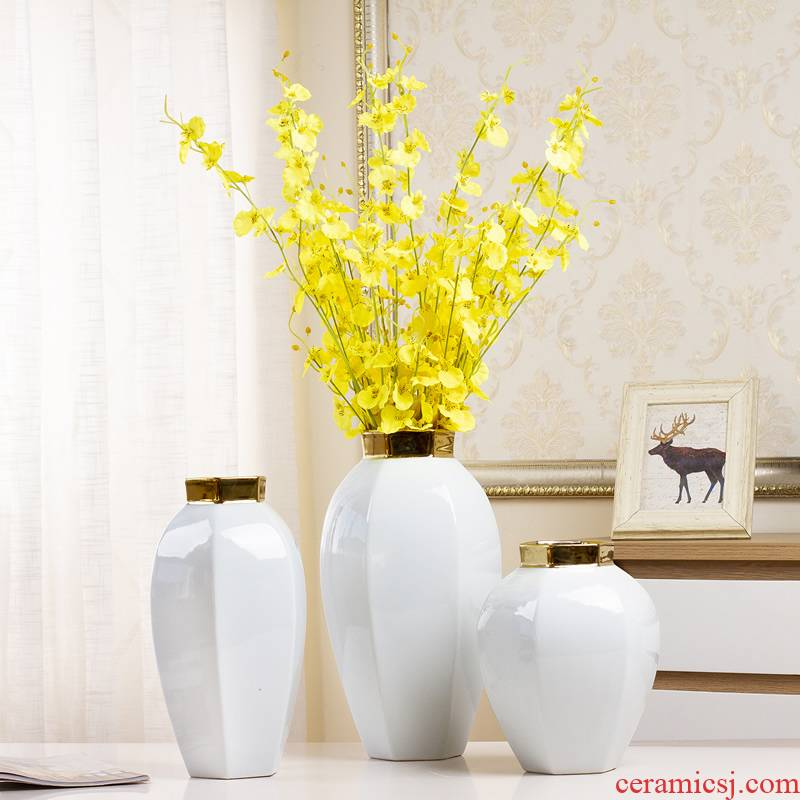 Nordic contracted white ceramic vase furnishing articles TV ark, small pure and fresh and dried flowers, flower arrangement table sitting room adornment