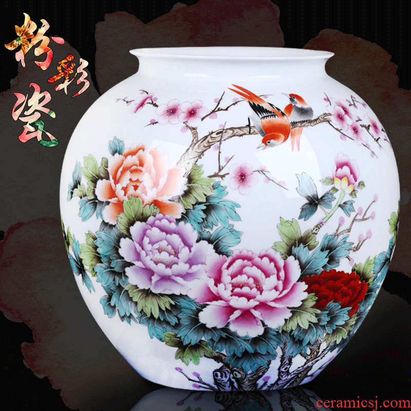 Jingdezhen ceramic big vase furnishing articles hand - made master vase decoration home sitting room decorate a room TV ark