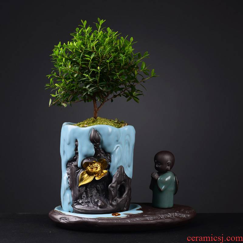Your up POTS creative new Chinese style bonsai pot green plant household indoor asparagus calamus zen furnishing articles violet arenaceous basin