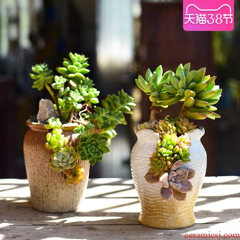 Combination clearance ceramic pot creative move -raise fleshy flower pot home thick clay fleshy small potted the plants