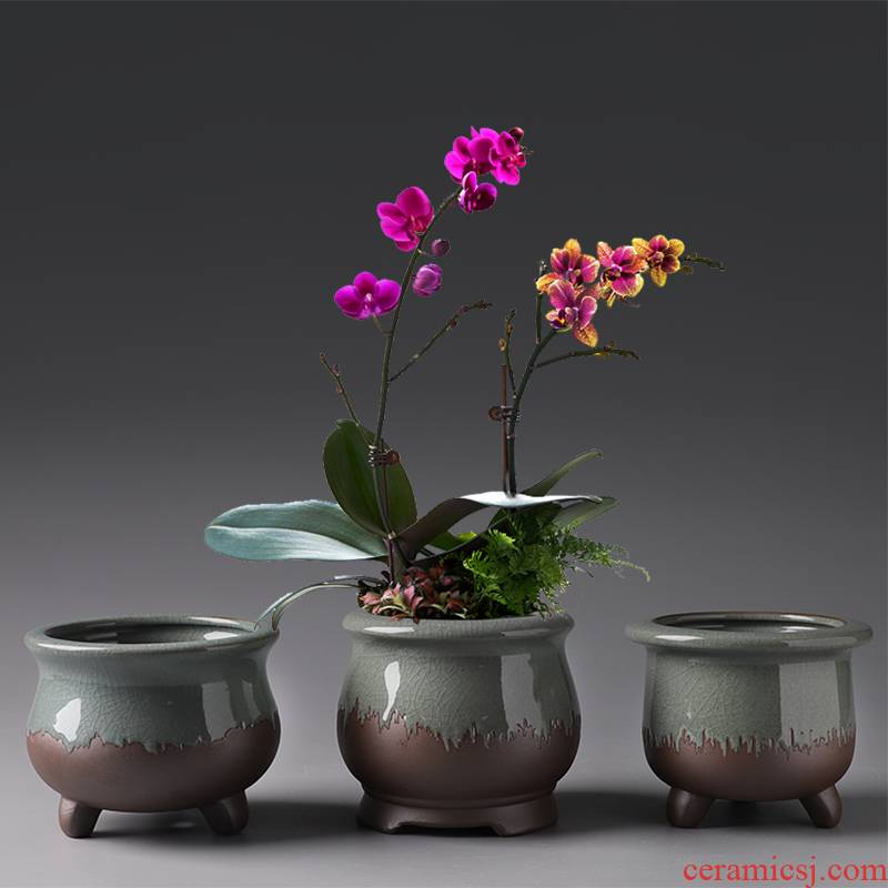 Purple sand flowerpot ceramic Chinese wind restoring ancient ways money plant air pot clay most creative flower pot meat meat meat the plants