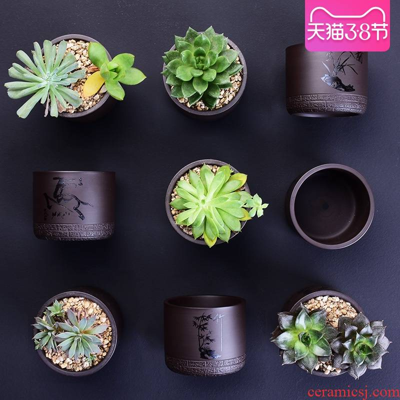 Purple sand flowerpot more meat wholesale ceramic plant small creative custom coarse pottery breathable contracted household specials flesh POTS
