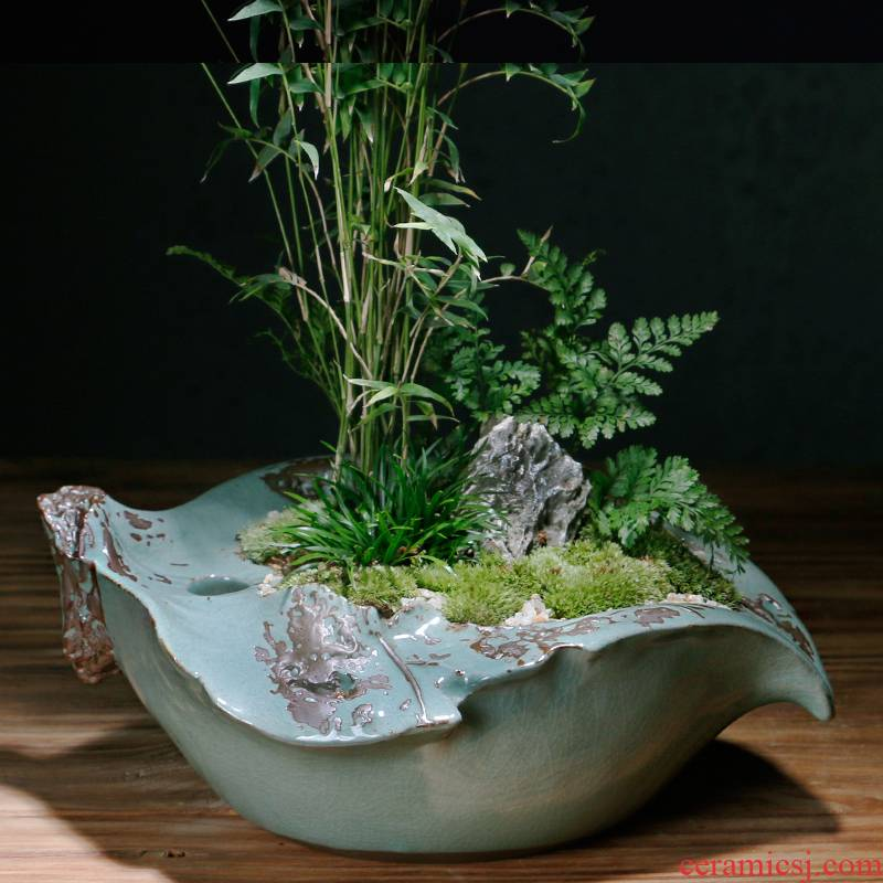 Creative move elder brother up with ceramic pot contracted money plant asparagus the plants potted large meat platter art basin