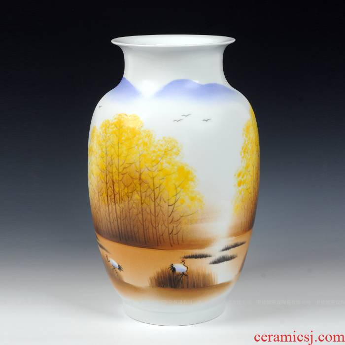 Modern Chinese jingdezhen ceramics sitting room place famous celebrity hand - made vases, home decorations arts and crafts
