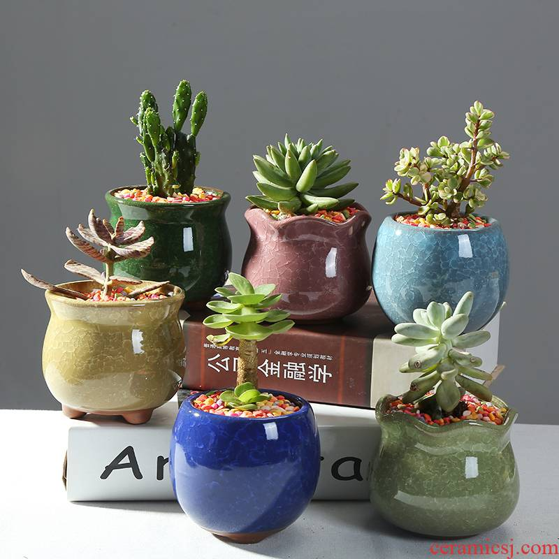 Ice crack ceramic flower POTS and colorful more meat, green asparagus orchid flowers exchanger with the ceramics vase contracted polychromy furnishing articles