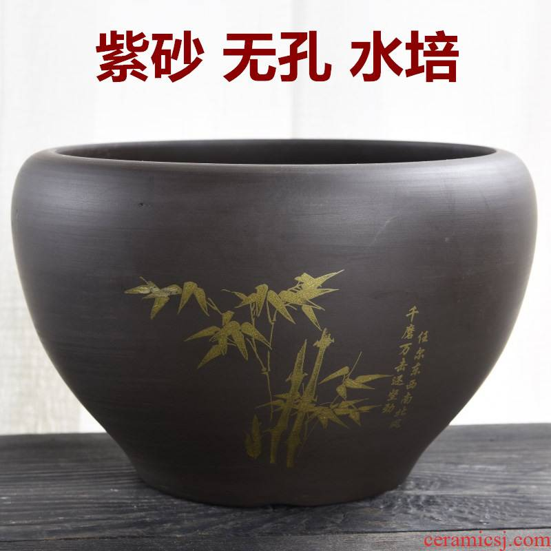 Violet arenaceous nonporous hydroponic flower pot ceramic special creative water lily bowl lotus refers to tea leaf lotus other copper wire grass to wash