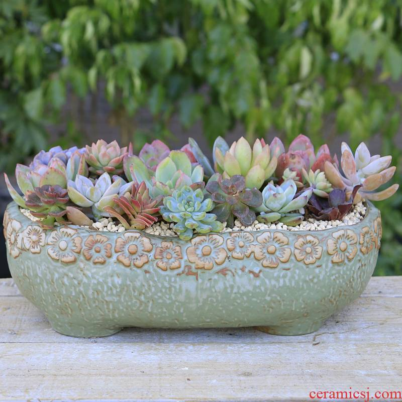 Fleshy flowerpot ceramic package mail special offer a clearance coarse pottery large diameter large potted creative move appetizer combination