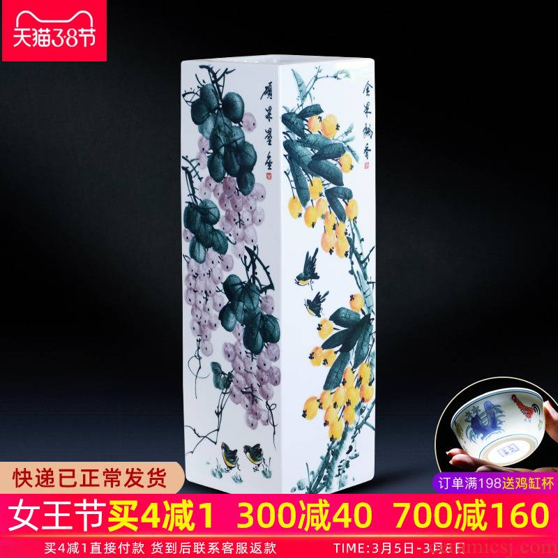 Jingdezhen ceramic vase furnishing articles famous fruits hand - drawn square of large vases, Chinese style household decoration