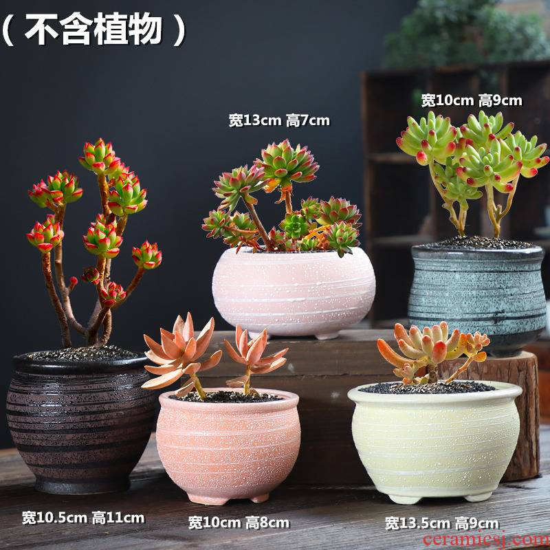 Coarse pottery flowerpot ceramic butterfly orchid violet arenaceous old running the green potted plant contracted ceramic creative move, fleshy wholesale