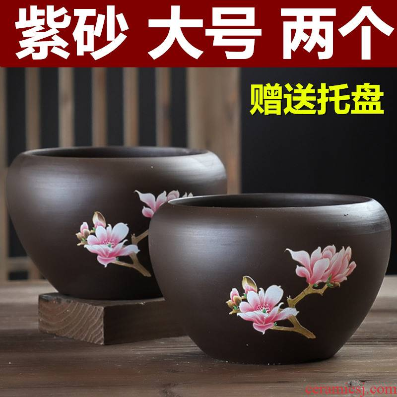 Butterfly orchid flower POTS purple large breathable clay with tray ideas other meat meat home meaty plant flower pot