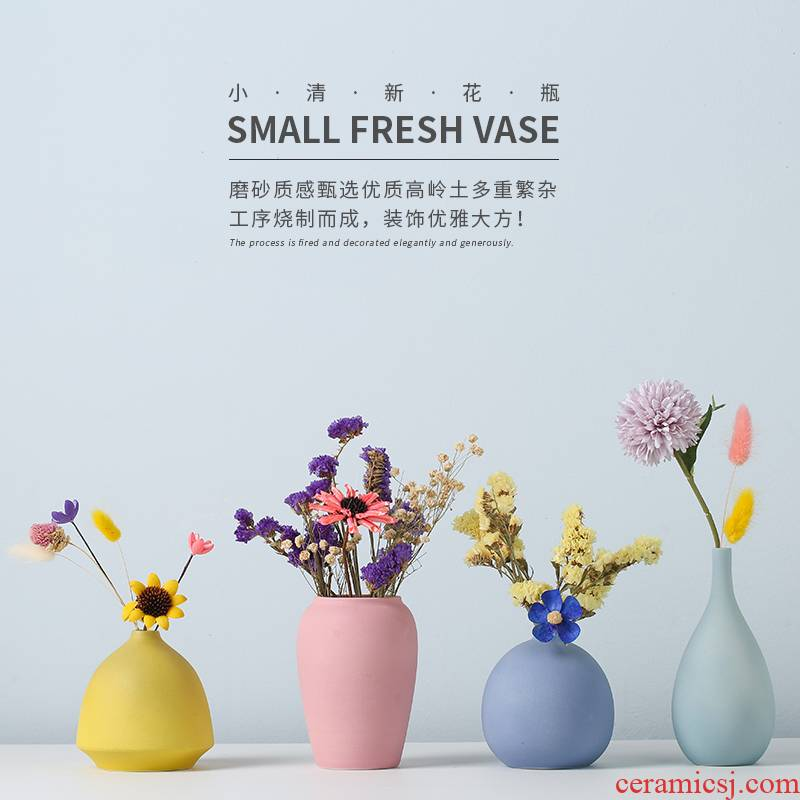 Floret bottle furnishing articles sitting room TV cabinet dry flower arranging flowers Nordic style ceramic home porch all over the sky star decoration