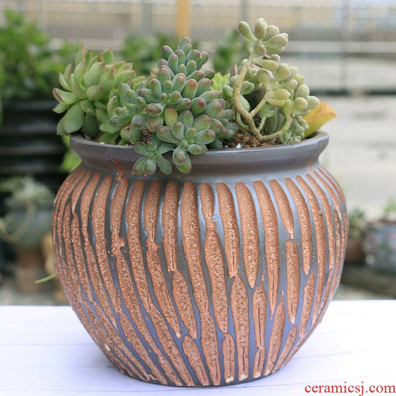 Old coarse pottery flowerpot ceramics violet arenaceous mud rock, fleshy creative Old running the meat meat plant basin POTS restoring ancient ways a clearance sale
